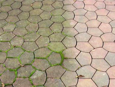 Trattamento anti alghe, anti muschio, pietra, mattone, laterizio, cotto, stop umidità