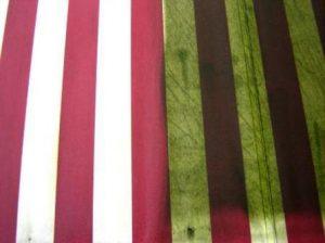 tenda con alghe, muffa, muschio, trattamento anti sporco, prim, dopo, antialghe